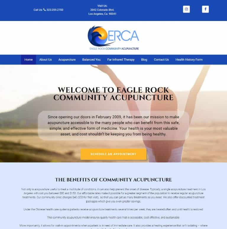 Los Angeles, Ca community Acupuncture website designed by Suncoast Web Marketing