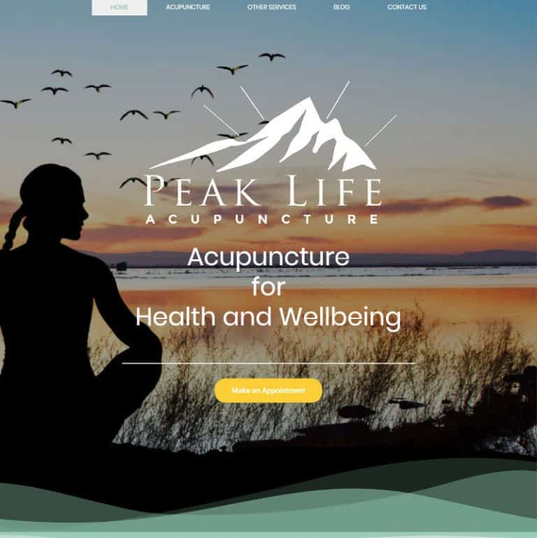 Acupuncture website home page
